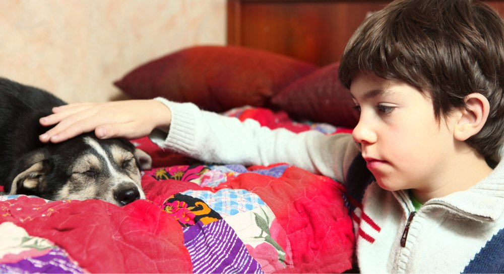 5 Benefits of Dogs On Children with Special Needs.