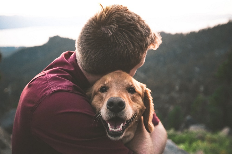 7 Memories to Make with Your Dog